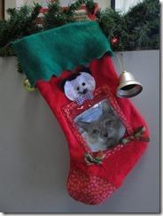 Zanzibar Xmas stocking